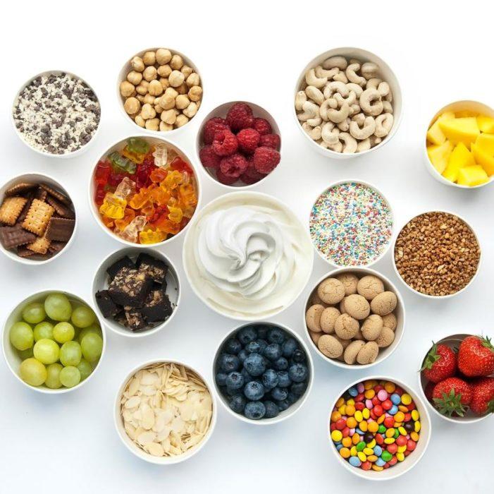 frozen-yogurt-seminar